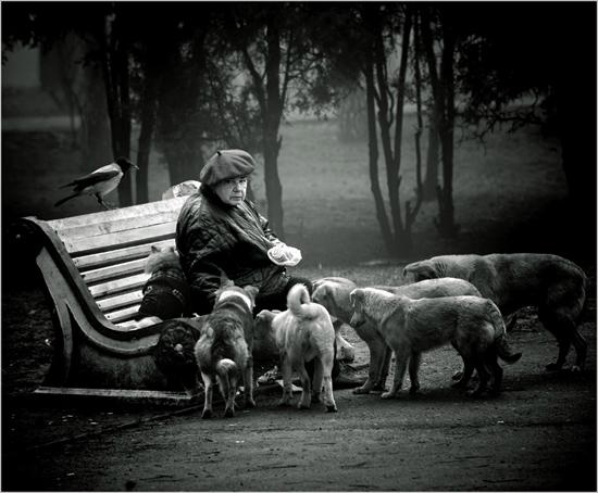 documentry-photography-27-lenzak